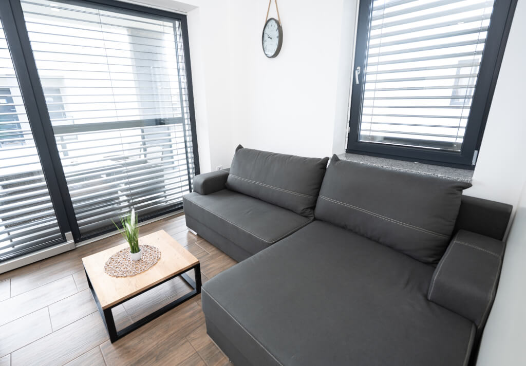 Apartmaji Banovci dnevna soba